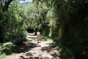 TMT_Travel_Guide_Madeira_Wanderung_1_Bild_5