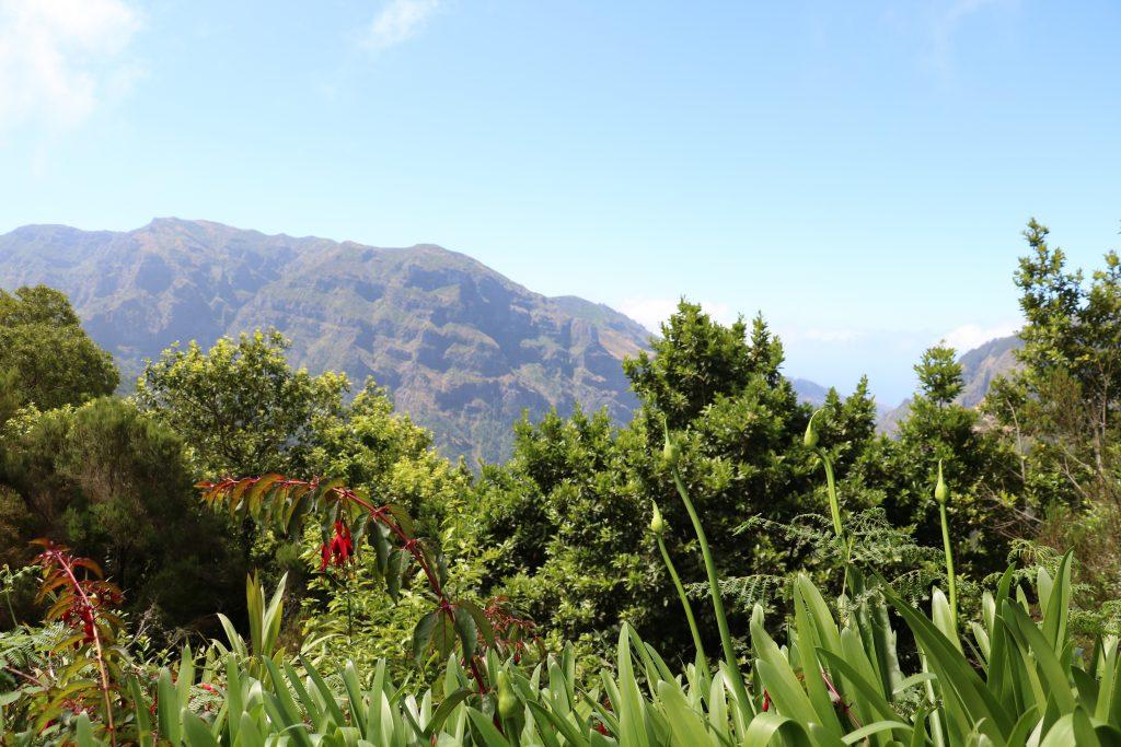 TMT_Travel_Guide_Madeira_Wanderung_2_Bild_2