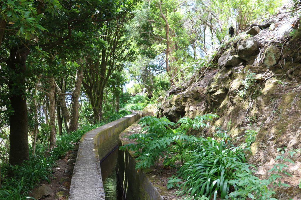 TMT_Travel_Guide_Madeira_Wanderung_2_Bild_6