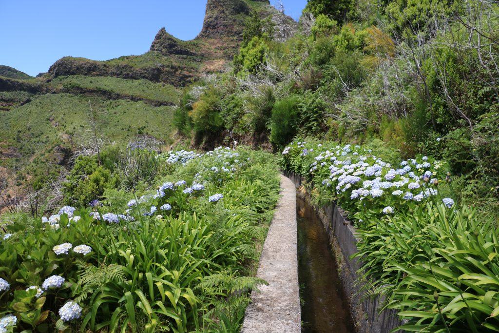 TMT_Travel_Guide_Madeira_Wanderung_2_Bild_9