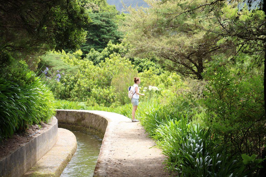 TMT_Travel_Guide_Madeira_Wanderung_2_Bild_11