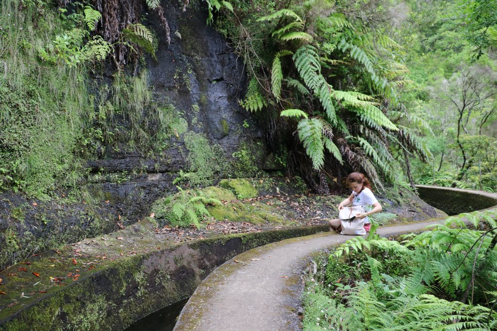 TMT_Travel_Guide_Madeira_Wanderung_2_Bild_12