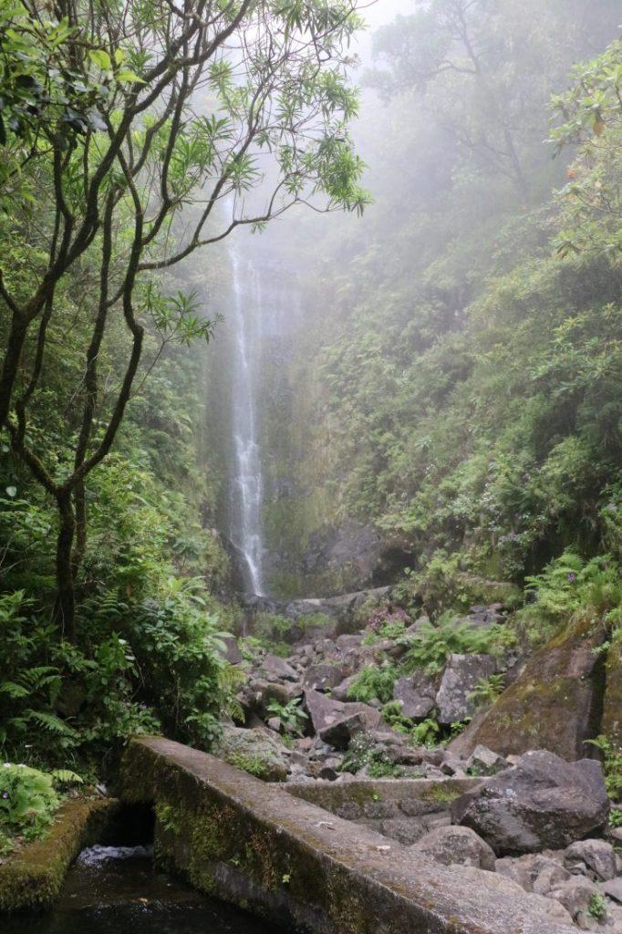 TMT_Travel_Guide_Madeira_Wanderung_2_Bild_17
