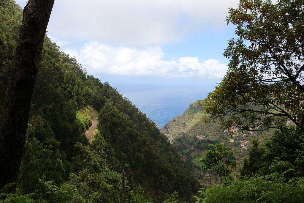 TMT_Travel_Guide_Madeira_Wanderung_3_Bild_1