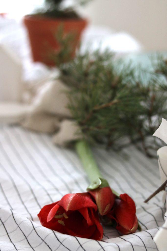 TMT_Adventskalender_nachhaltige_Geschenkverpackung_9